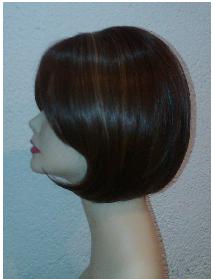Modelo 5 perfil