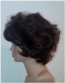 Modelo 6 perfil