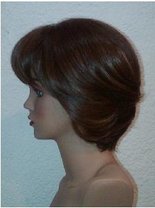 Modelo 8 perfil