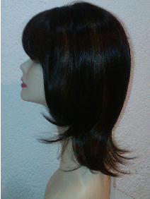 Modelo 9 perfil