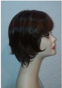 Modelo B perfil